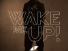avicii-wake-me-up-612x612