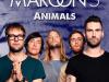 Maroon_5_Animals_significato