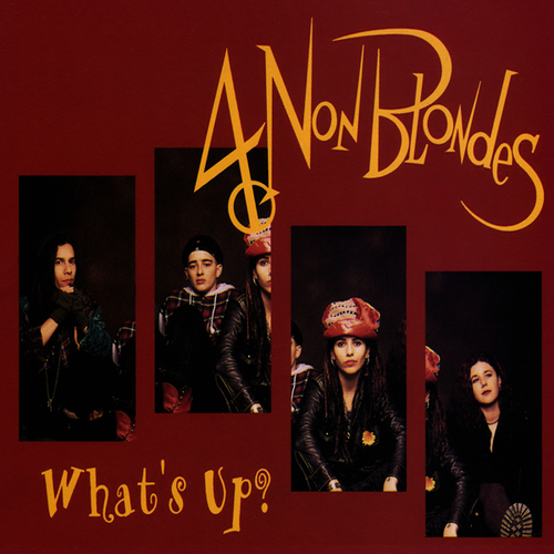 4_non_blondes_what_up_significato