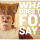The Fox (What does the Fox say?) – Ylvis